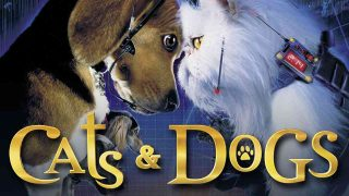 Cats and Dogs 2001