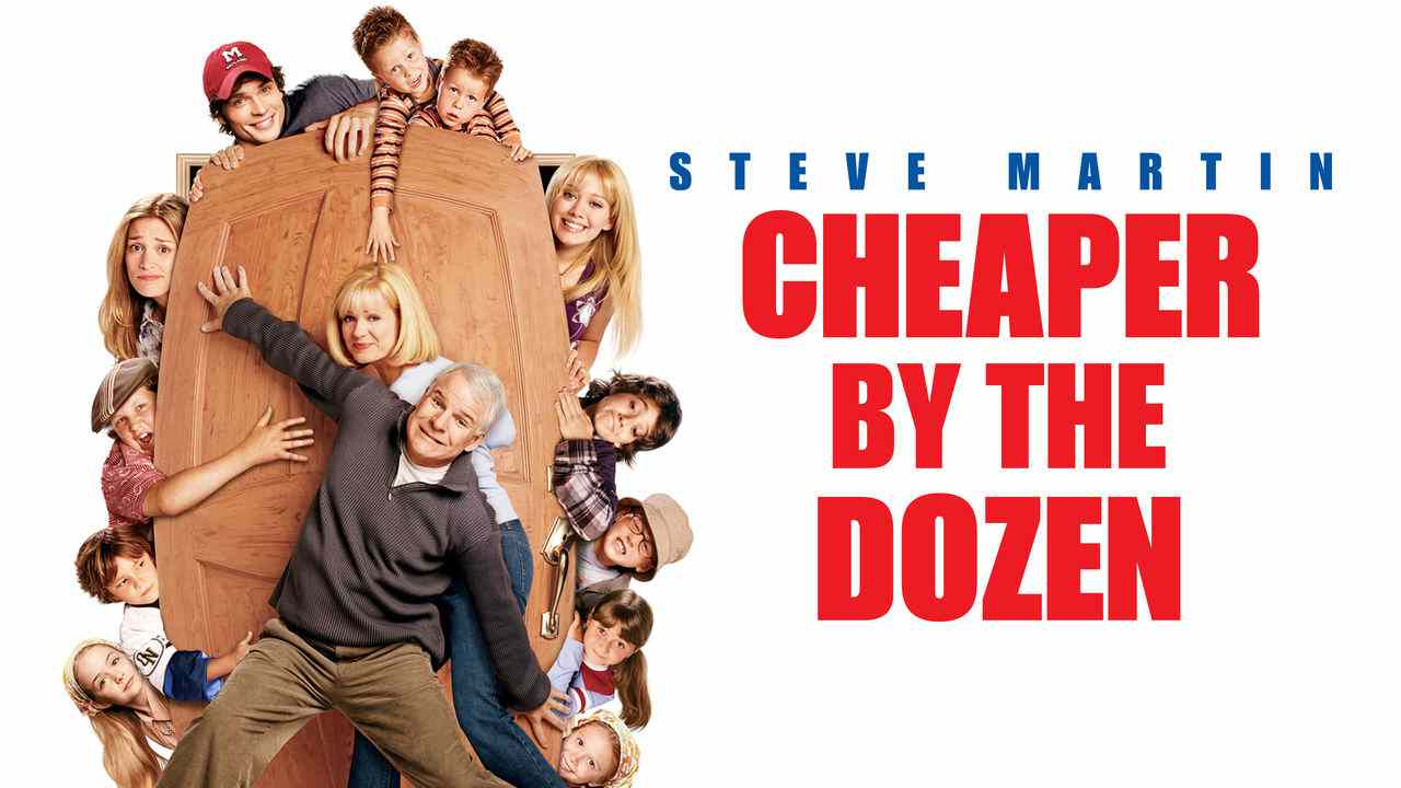 Is Movie Cheaper By The Dozen 2003 Streaming On Netflix
