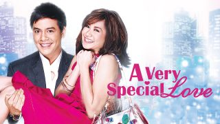 A Very Special Love 2008