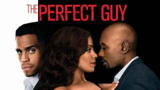 The Perfect Guy 2015