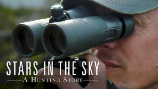 Stars in the Sky: A Hunting Story 2018